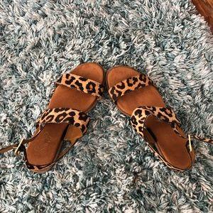 Franco Sarto faux cheetah fur sandals 🐆